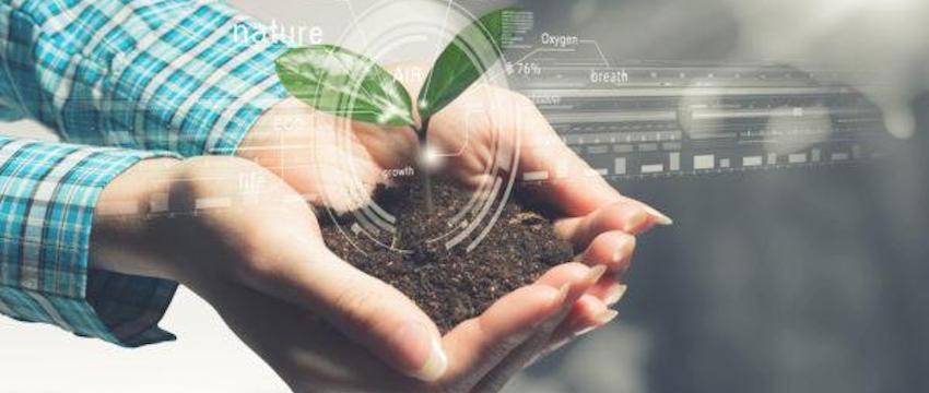 empresas verdes IZA